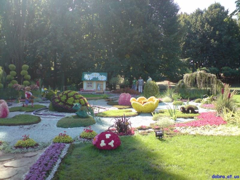 Виставка квітів